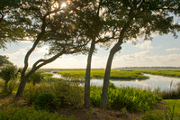The Murrells Inlet Marsh